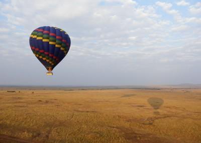 Jenn gallery balloon